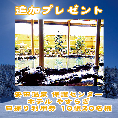 present_addition_54.jpg
